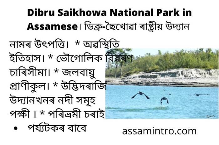 History of Dibru Saikhowa National Park in Assamese। ডিব্ৰু-ছৈখোৱা ৰাষ্ট্ৰীয় উদ্যান