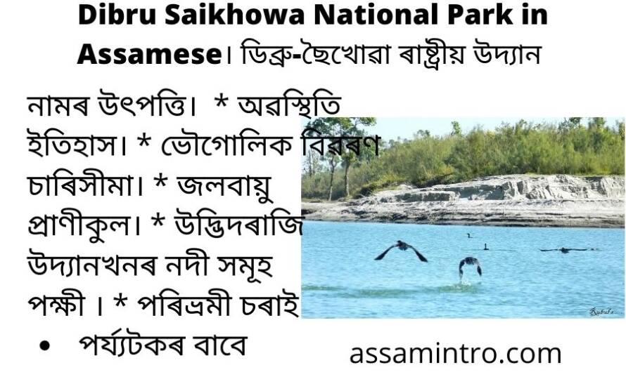 Dibru Saikhowa National Park in Assamese (1)