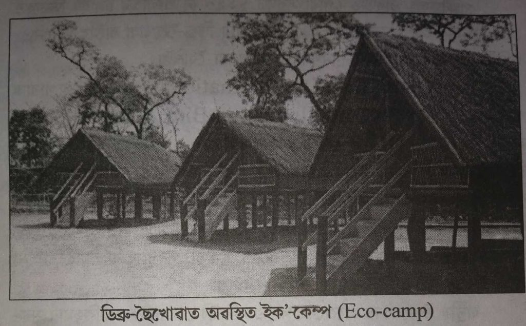 Eco  Camp of Dibru saikhowa