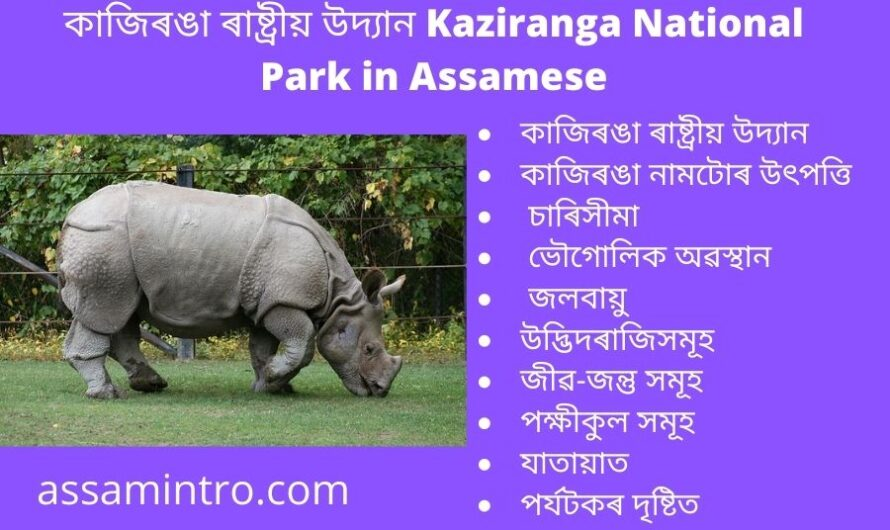 Kaziranga National Park in Assamese