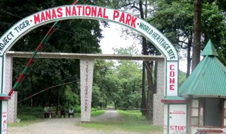 Manas National Park Gate