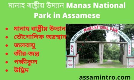 Manas National Park in Assamese