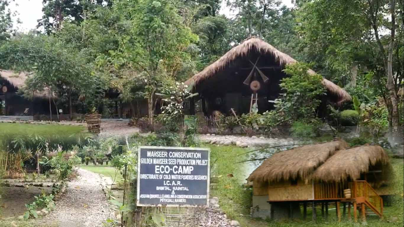 Eco camp of Nameri National Park