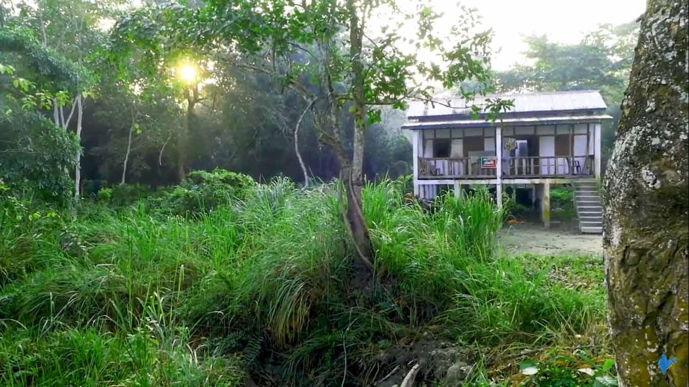 Eco camp of Orang