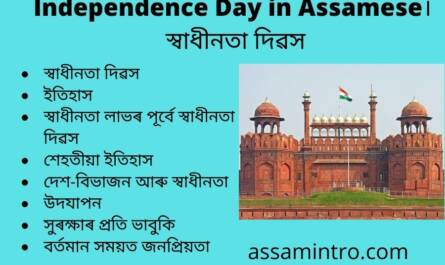 Essay on Independence Day in Assamese
