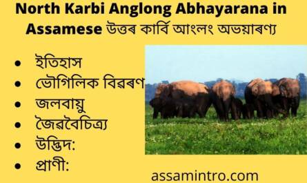 North Karbi Anglong Abhayarana in Assamese