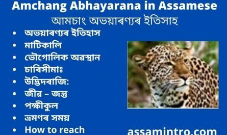 Amchang Abhayarana in Assamese