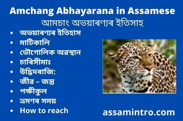 Amchang Abhayarana in Assamese। আমচাং অভয়াৰণ্যৰ ইতিসাহ