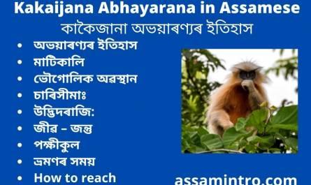 Kakaijana Abhayarana in Assamese