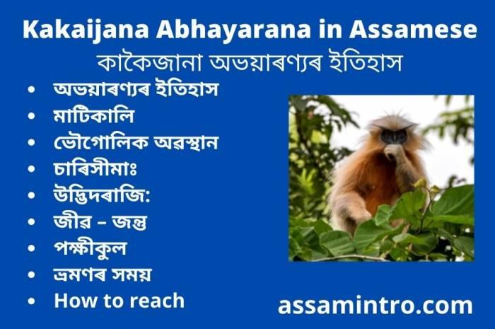 Kakaijana Abhayarana in Assamese। কাকৈজানা অভয়াৰণ্যৰ ইতিহাস
