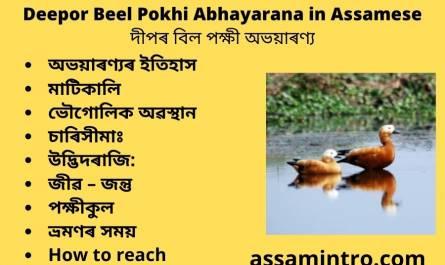 Deepor Beel Pokhi Abhayarana in Assamese