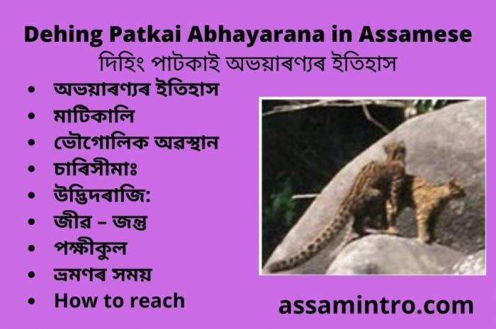 Dehing Patkai Abhayarana in Assamese। দিহিং পাটকাই অভয়াৰণ্যৰ ইতিহাস