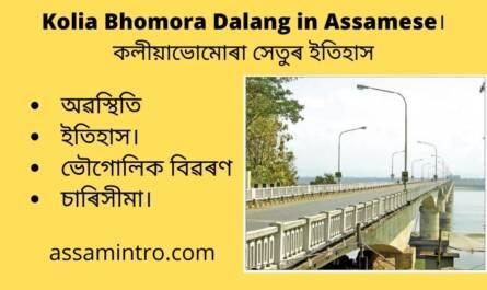 Kolia Bhomora Dalang in Assamese
