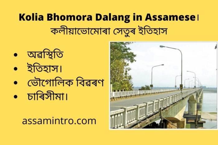 About of Kolia Bhomora Dalang in Assamese। কলীয়াভোমোৰা সেতু