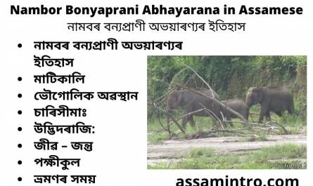 Nambor Bonyaprani Abhayarana in Assamese