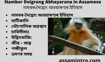 Nambor Doigrung Abhayarana in Assamese