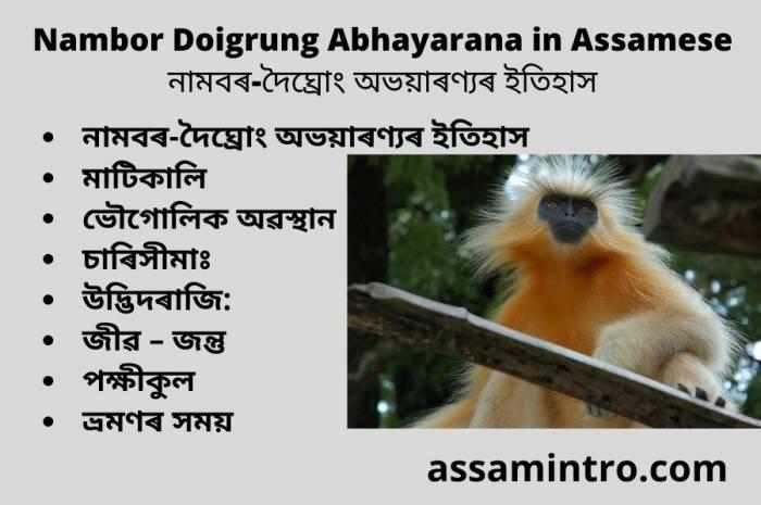 Nambor Doigrung Abhayarana in Assamese। নামবৰ-দৈঘ্ৰোং অভয়াৰণ্যৰ ইতিহাস