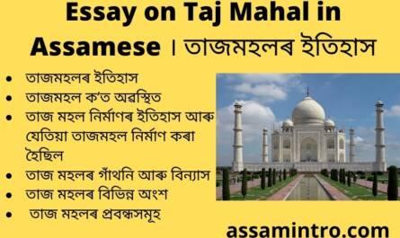 Essay on Taj Mahal in Assamese
