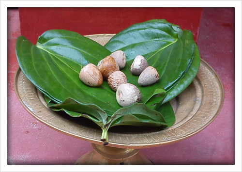 """""""Tamul Paan"""" served in a Bota, a traditional Bell metal Utensil"""