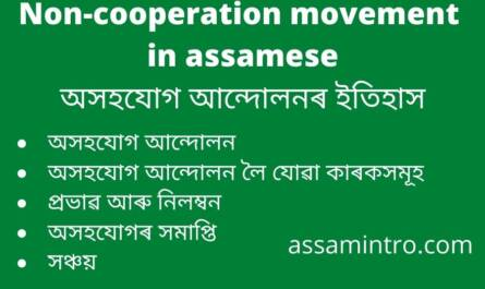 Non-cooperation movement in assamese