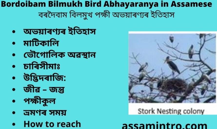 Bordoibam Bilmukh Bird Abhayaranya in Assamese (1)