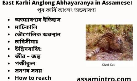 East Karbi Anglong Abhayaranya in Assamese