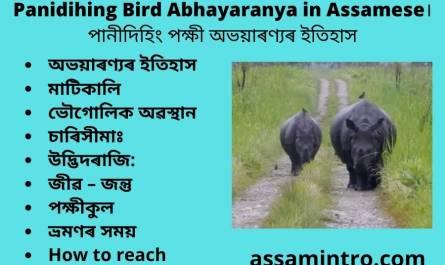Panidihing Bird Abhayaranya in Assamese