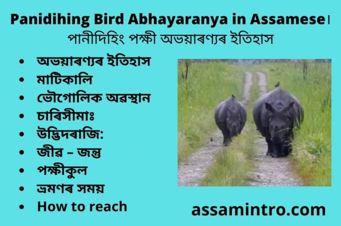 Panidihing Bird Abhayaranya in Assamese। পানীদিহিং পক্ষী অভয়াৰণ্যৰ ইতিহাস