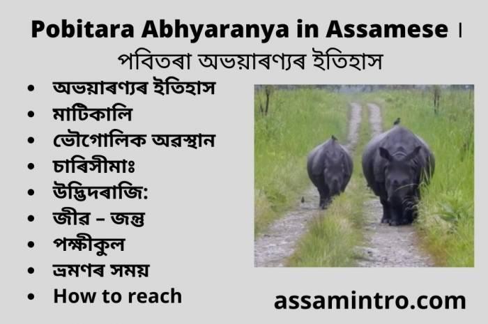 Pobitara Abhyaranya in Assamese । পবিতৰা অভয়াৰণ্যৰ ইতিহাস